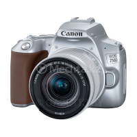 Фотоаппарат зеркальный CANON EOS 250D EF-S 18-55 mm IS STM Silver
